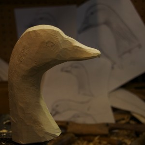 Decoy Head Taking Shape