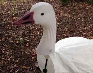 Snow Goose Decoy Head